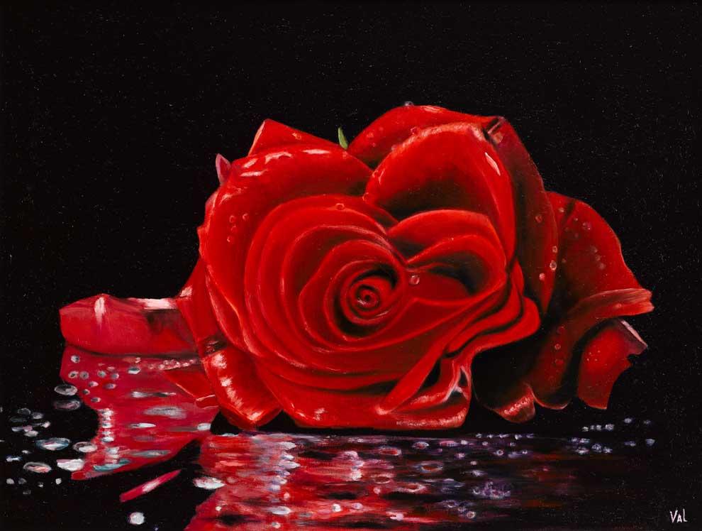 eternity-red-rose-46hx61w-cm_990